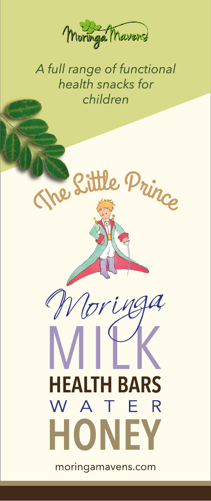 Screen Little Prince banner-01